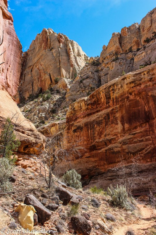 Capital Reef- Chimney Rock-Spring Canyon 042.jpg
