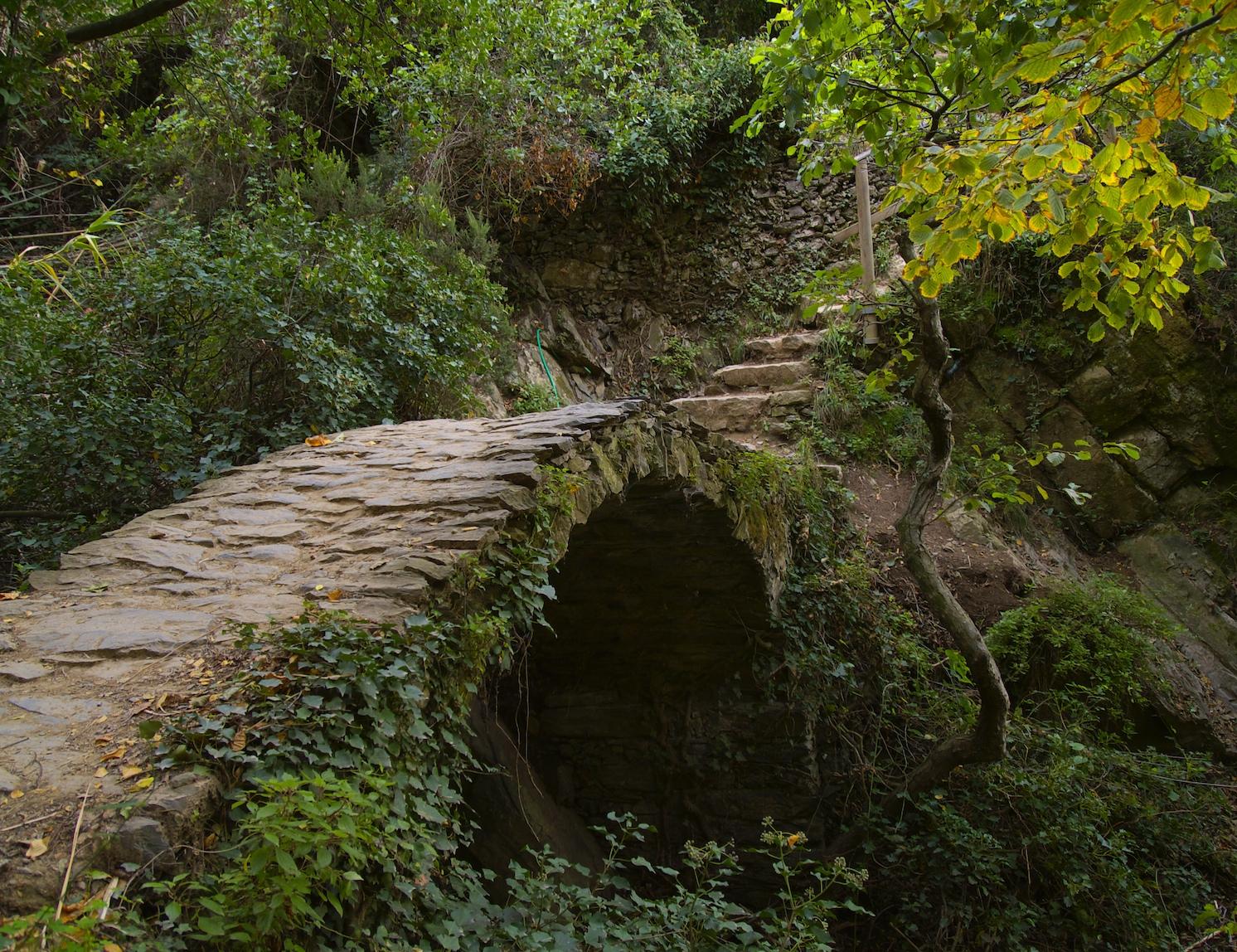cinque trail ponte1.jpg
