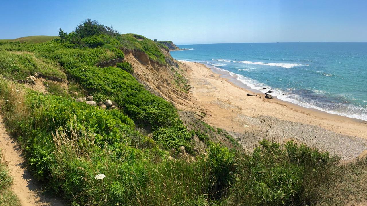 Coast-IMG_3941.jpeg
