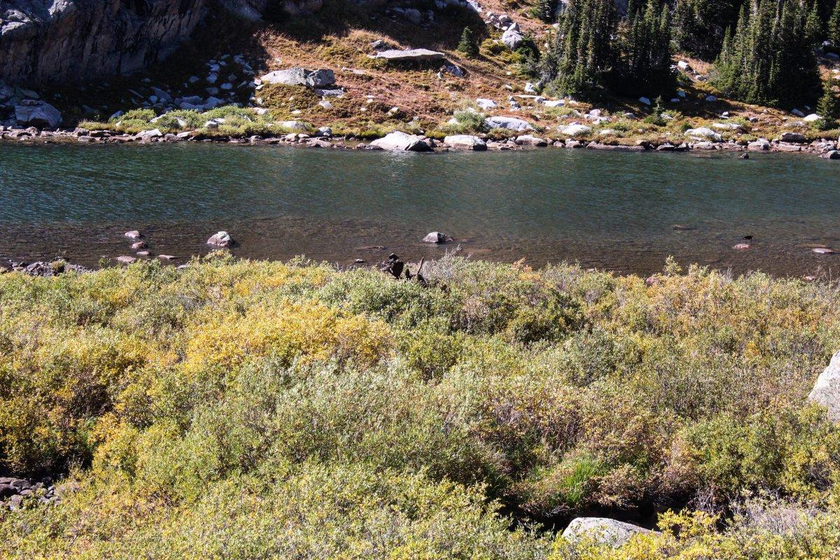 CPW-Wilderness Basin-23.jpg