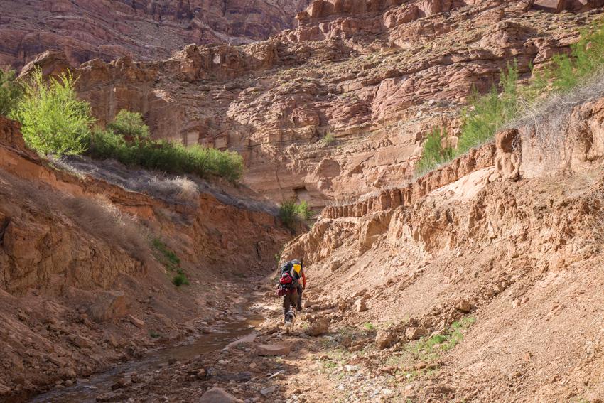 dark-canyon-cataract-packraft-39.jpg