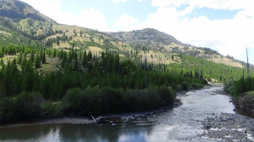 Day 2 A5 Lamar River 2.JPG