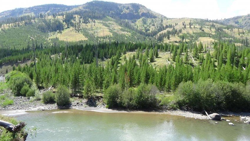 Day 2 A6 Lamar River 3.JPG