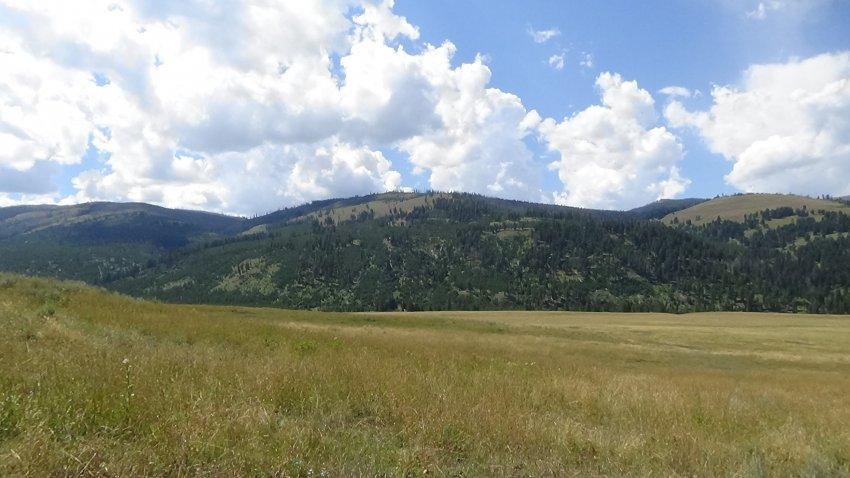 Day 4 A6 Lamar valley.JPG