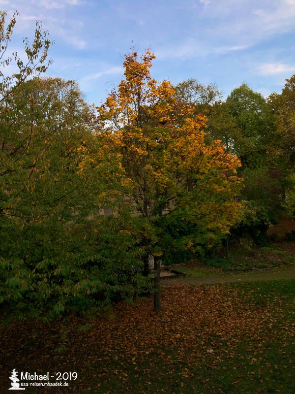 fall_oct_ger.jpeg