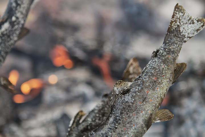 fish-on-fire.JPG