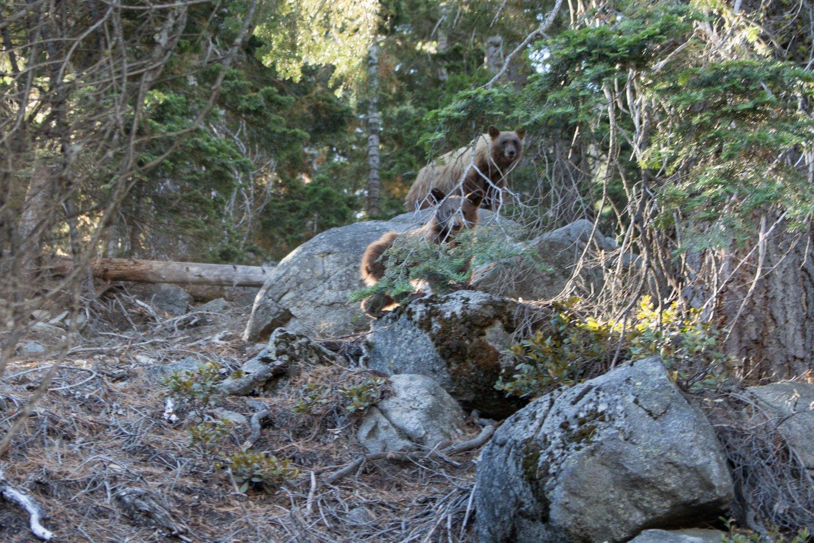 Four Mile Trail-26.jpg