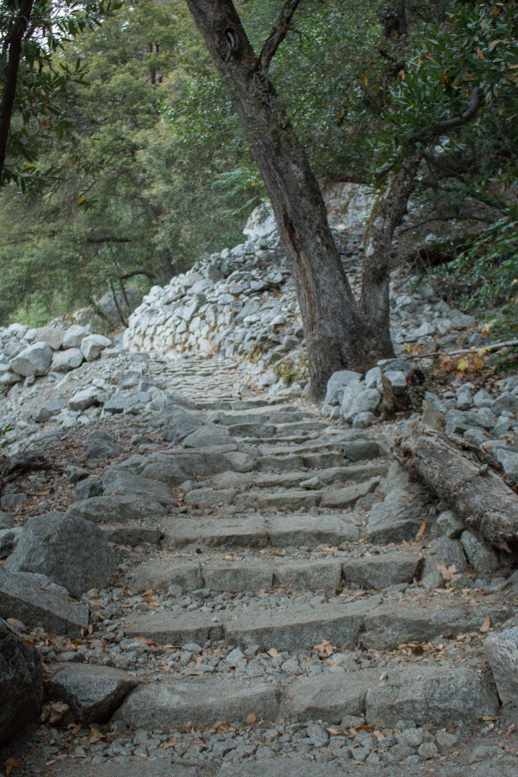 Four Mile Trail.jpg