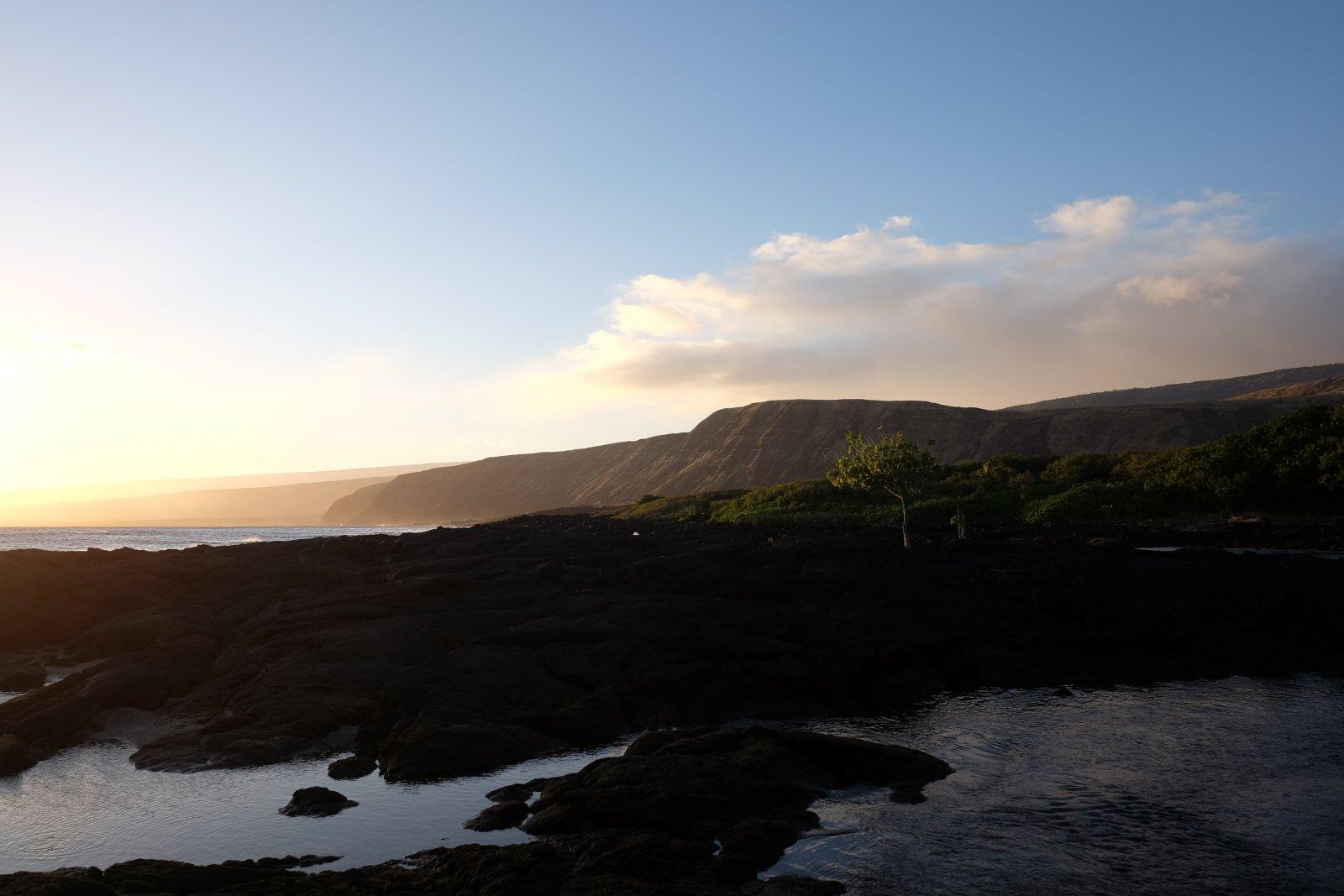 Hawaii2020 (22 of 64)-5.jpg