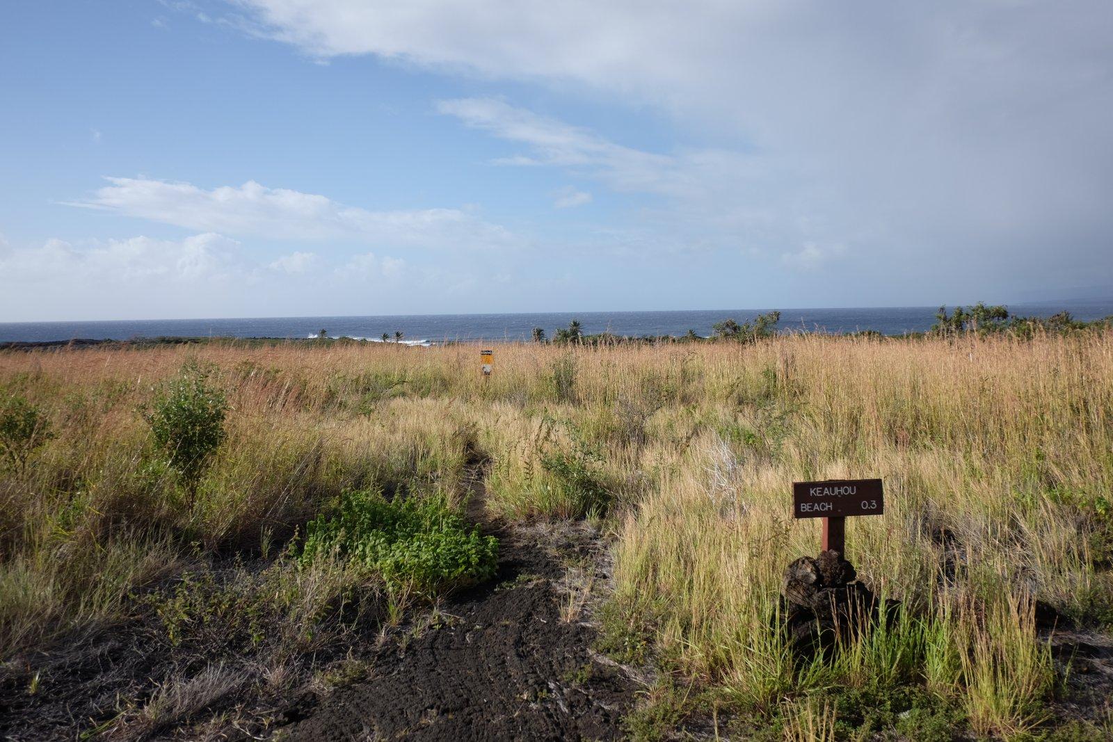 Hawaii2020 (47 of 64)-6.jpg