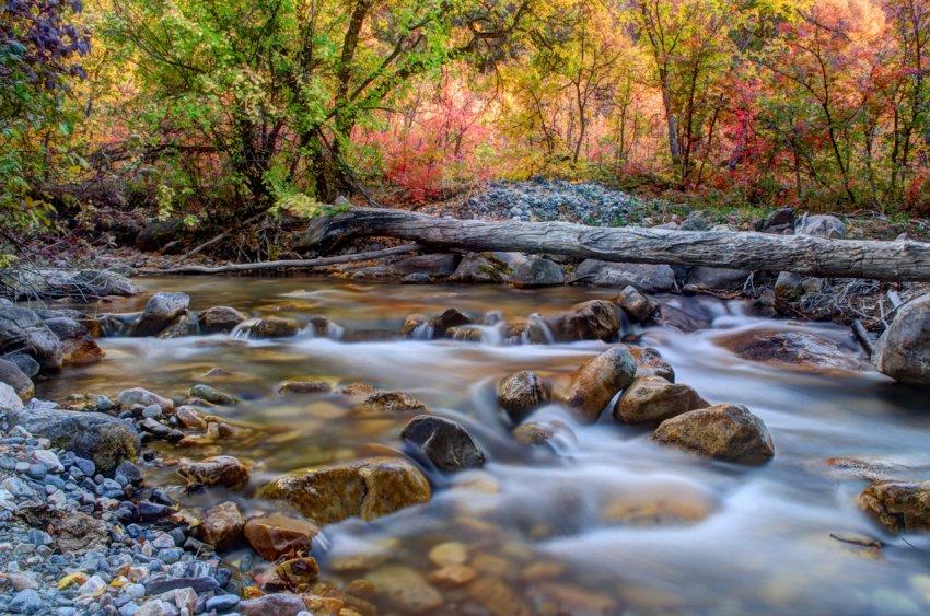 High Creek fused1.jpg