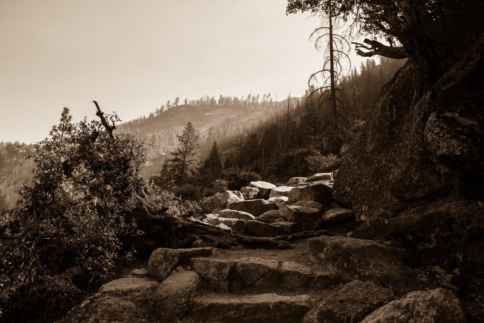 Illilouette Falls-56.jpg