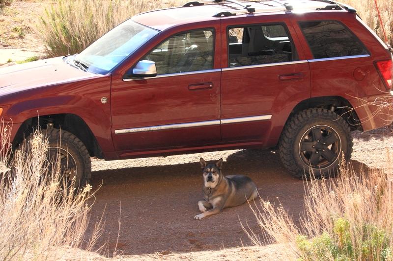 Jeep_GuardDog.JPG