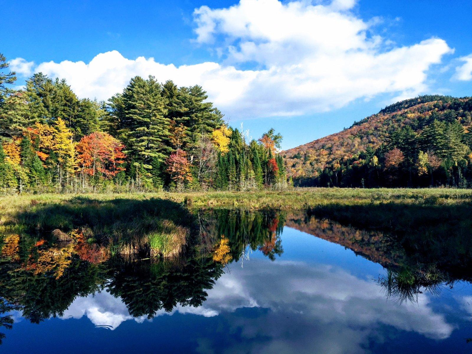 Lake- IMG_2245.jpg