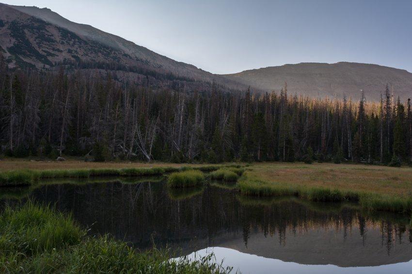 Middle Basin 9-171194.jpg