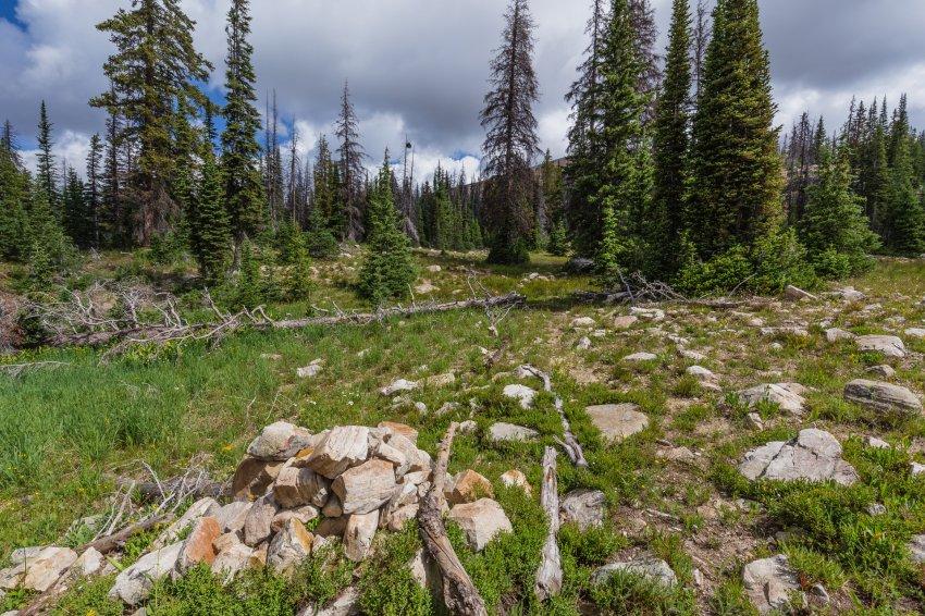Middle Fork trail split.jpg