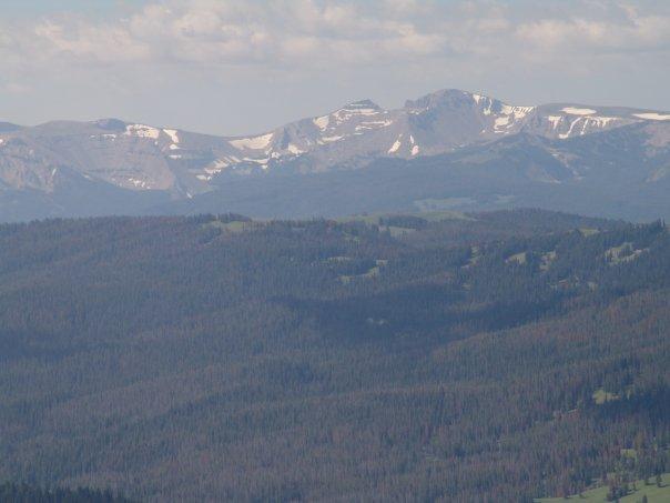 Mount Leidy Sheep Mountain.jpg