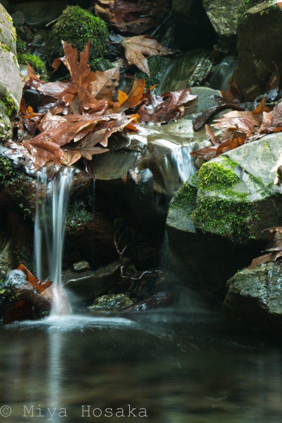 Murietta Falls-16.jpg