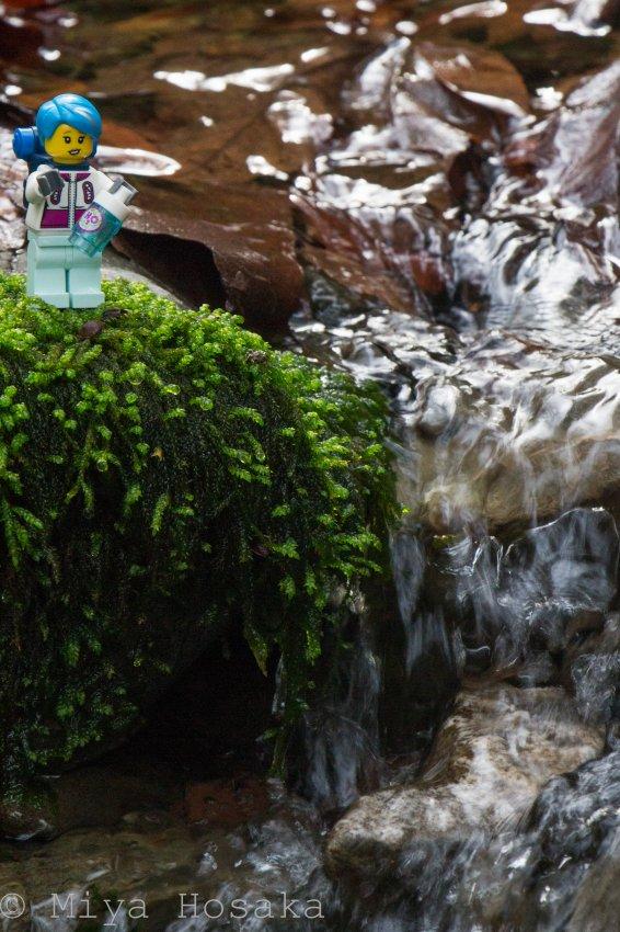 Murietta Falls-18.jpg