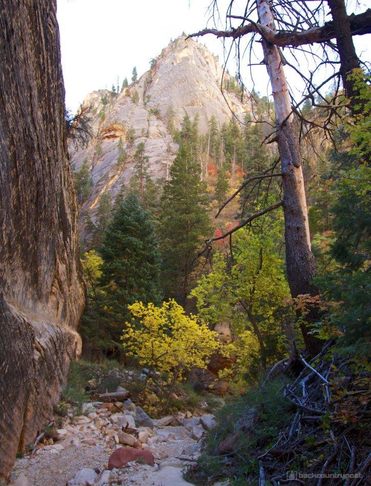 mystery-canyon-zion-fall-15.jpg