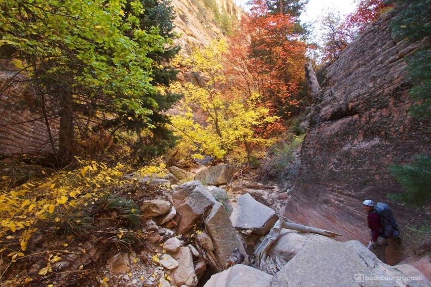 mystery-canyon-zion-fall-16.jpg