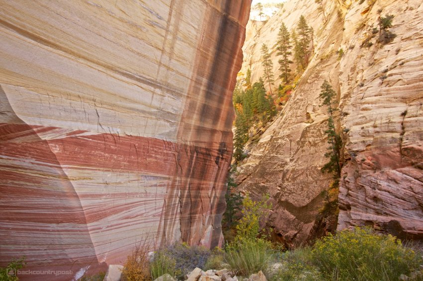 mystery-canyon-zion-fall-19.jpg