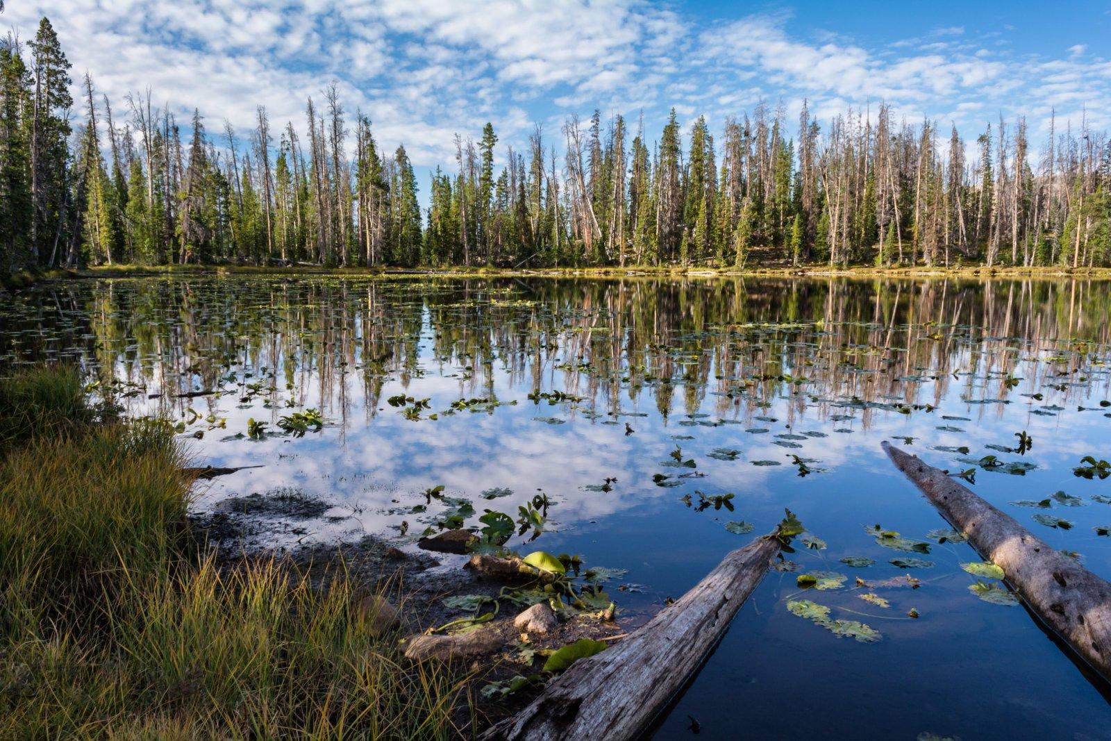 Naturalist Basin Loop 9-180083-proc.jpg