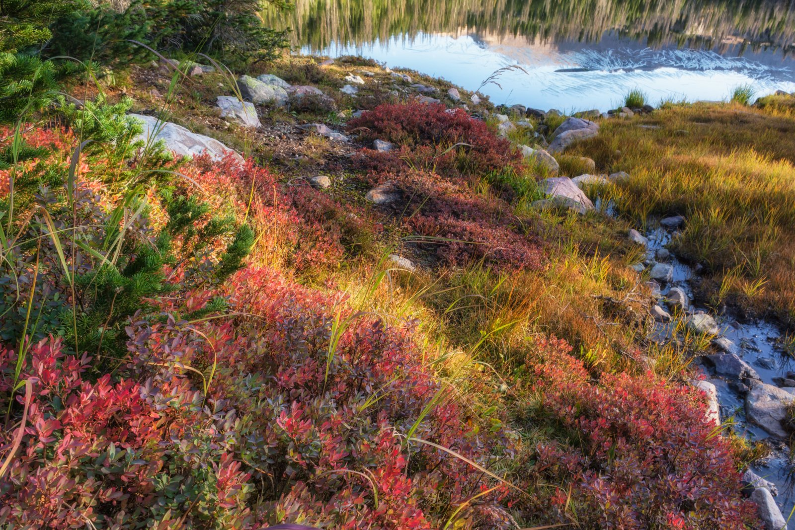 Naturalist Basin Loop 9-180550-recipe.jpg