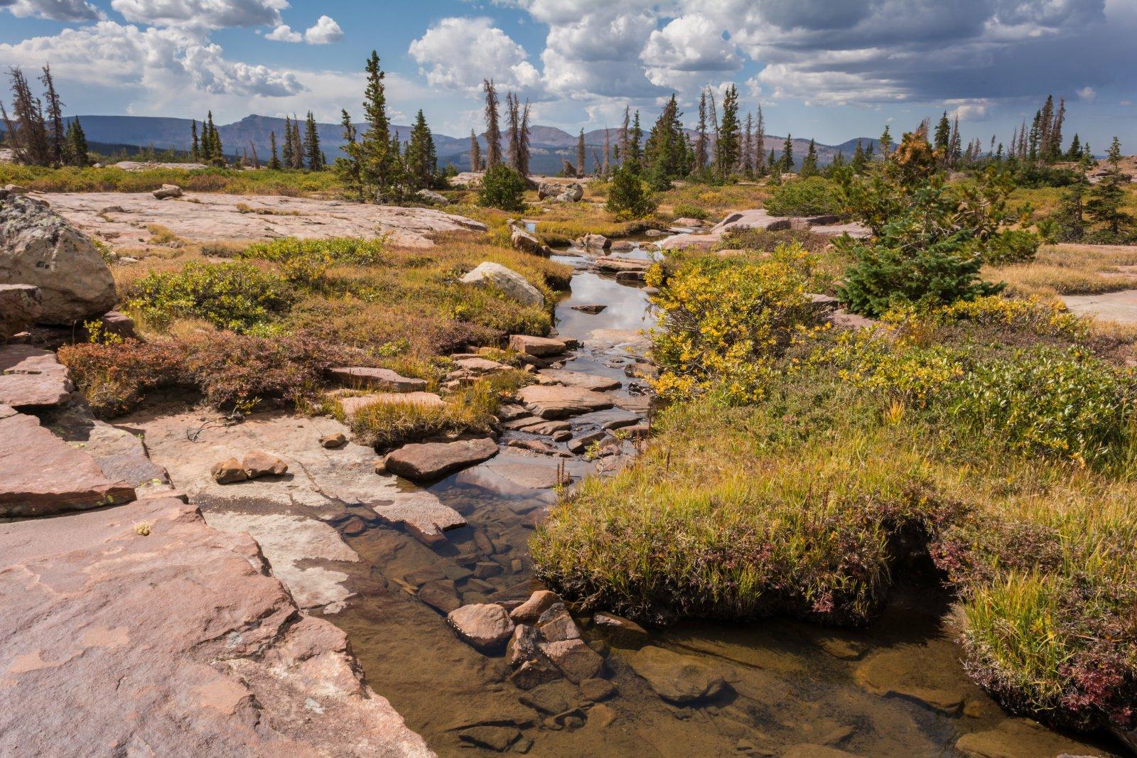 Naturalist Basin Loop 9-180636.jpg