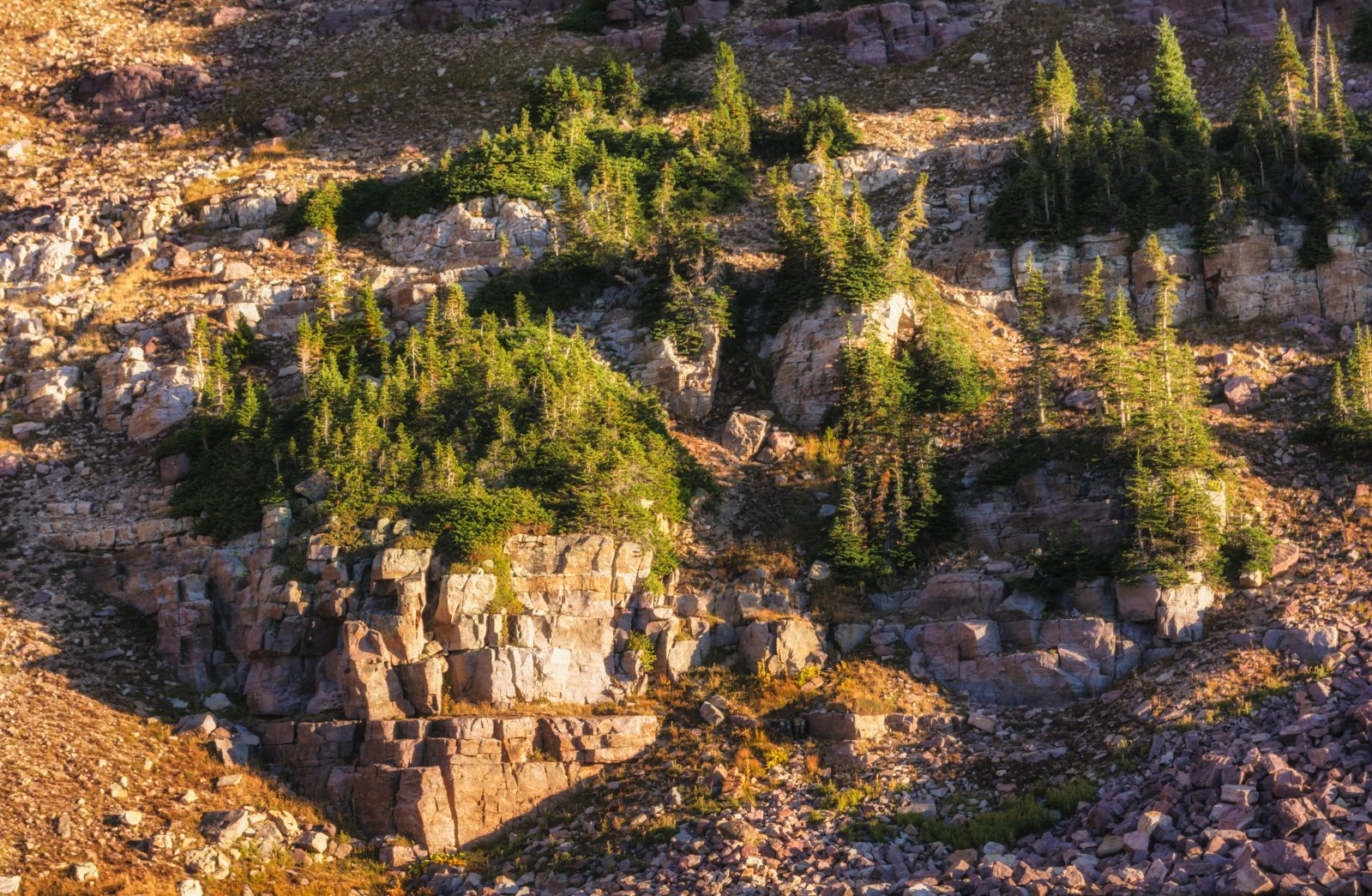 Naturalist Basin Loop 9-181161-sunlight.jpg