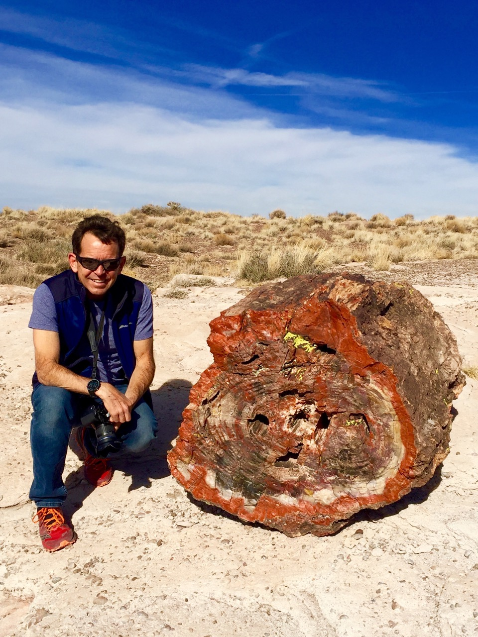 Not-the-oldest-Rick-petrified-forest-IMG_5204.jpeg