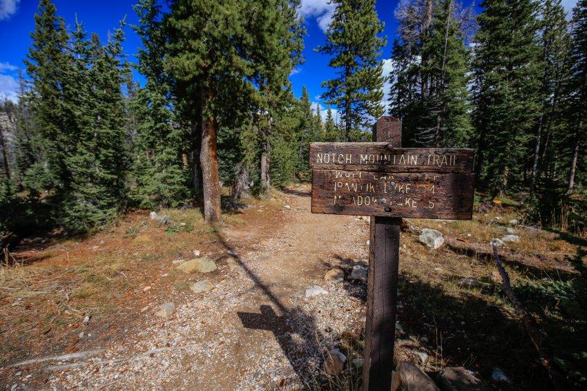 Notch Mtn Trail.jpg