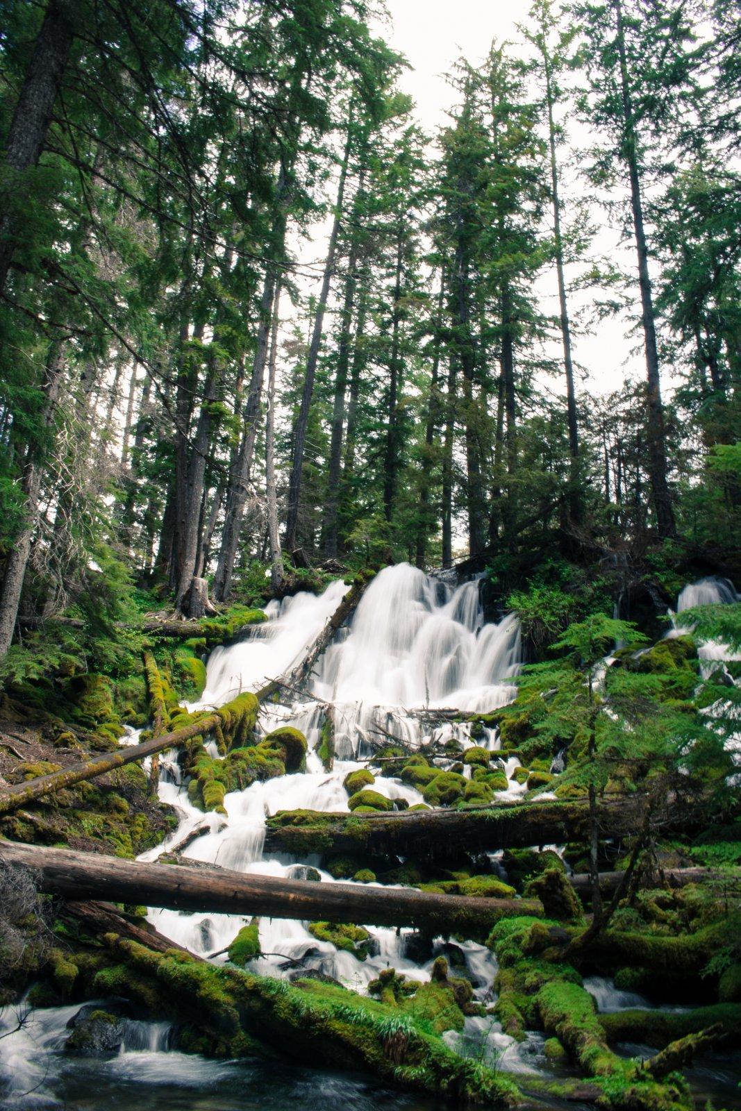 Oregon19-21.jpg