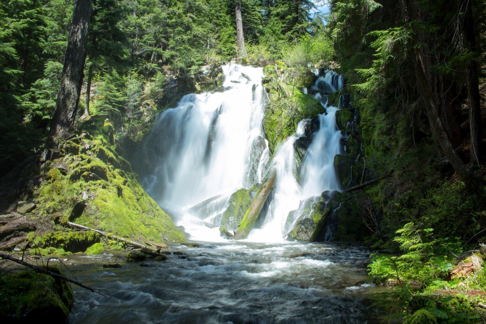 Oregon19-75.jpg
