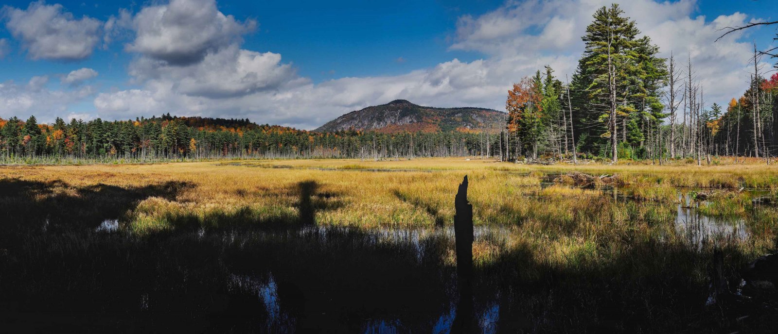 P15-pond panorama-peak background-Adironack Marsh Pano.jpg
