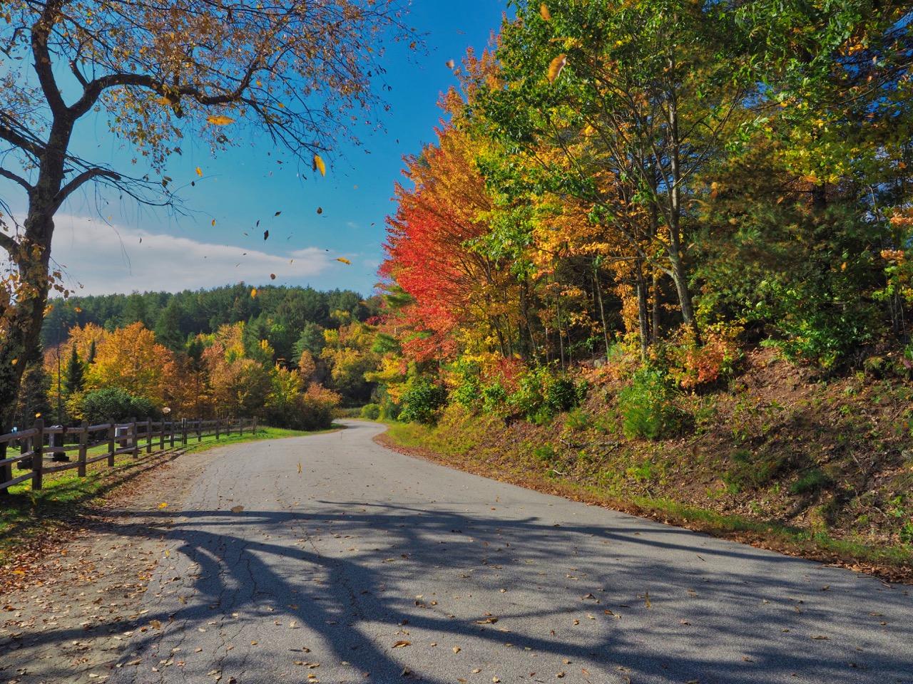 P3-road to Pharaoh lake TH-PA100073.jpg