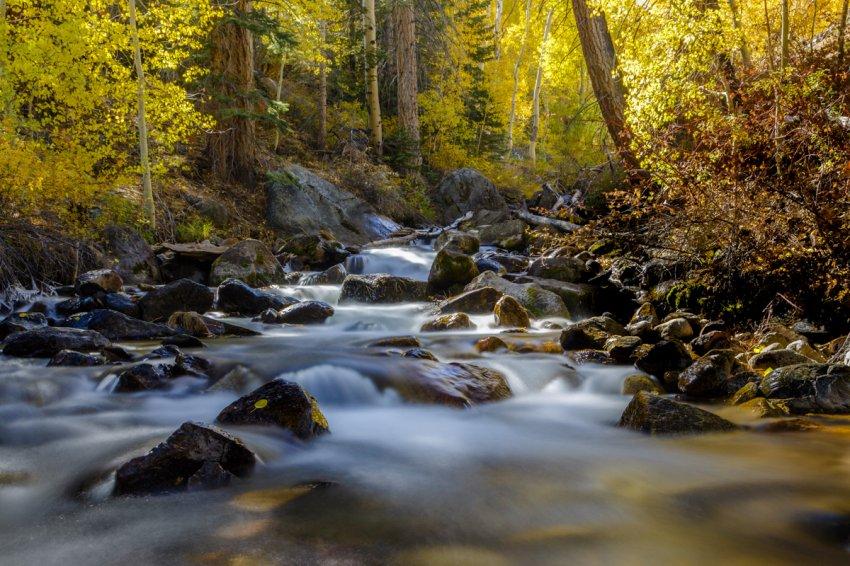 Parker Creek Most Beautiful.jpg