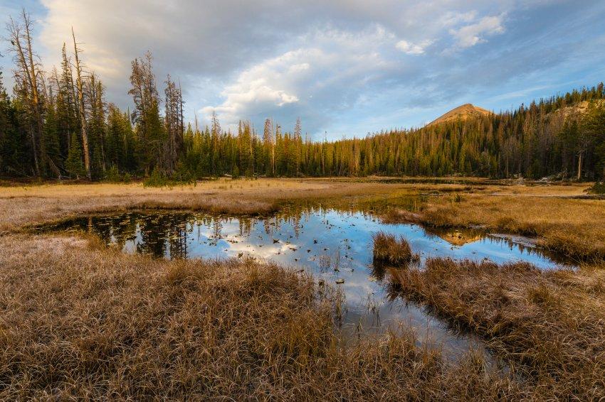 Ponds Lake.jpg