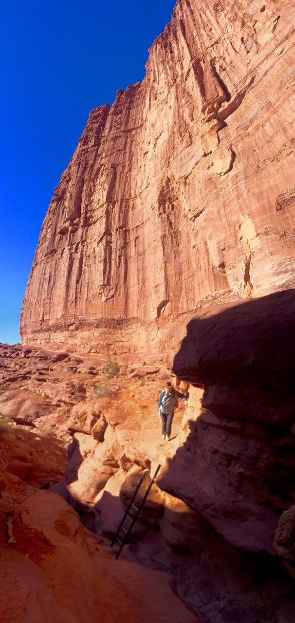 Rick at ladder-IMG_7387.jpg