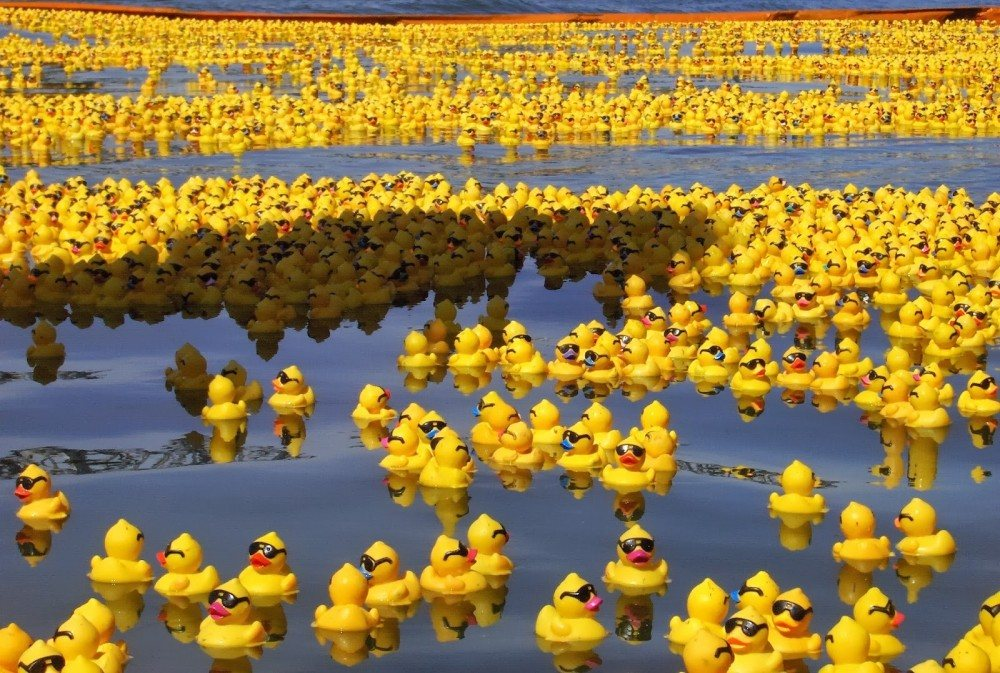 Rubber_Duck_Sea_by_whispering_hills_1000_673_84_c1.jpg