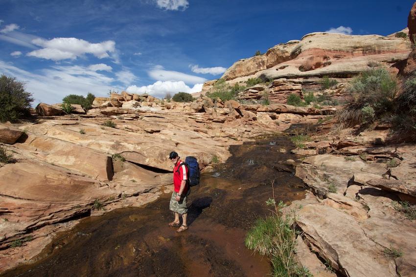salt-creek-canyonlands-10.jpg