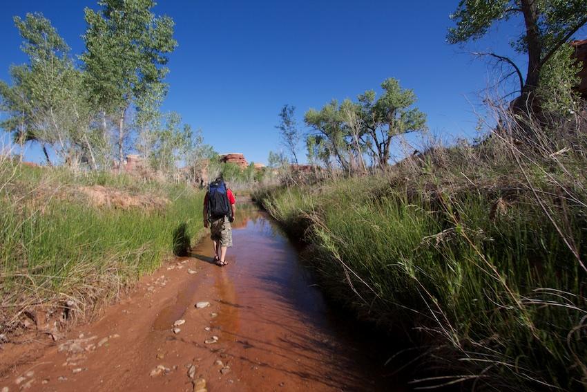 salt-creek-canyonlands-145.jpg