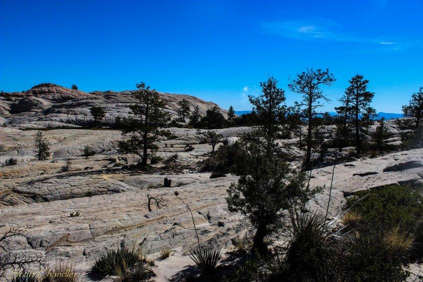 Snow Canyon Rim 021-20.jpg