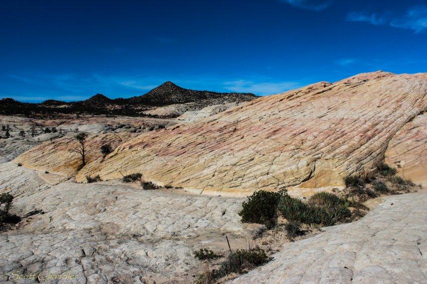 Snow Canyon Rim 035-34.jpg