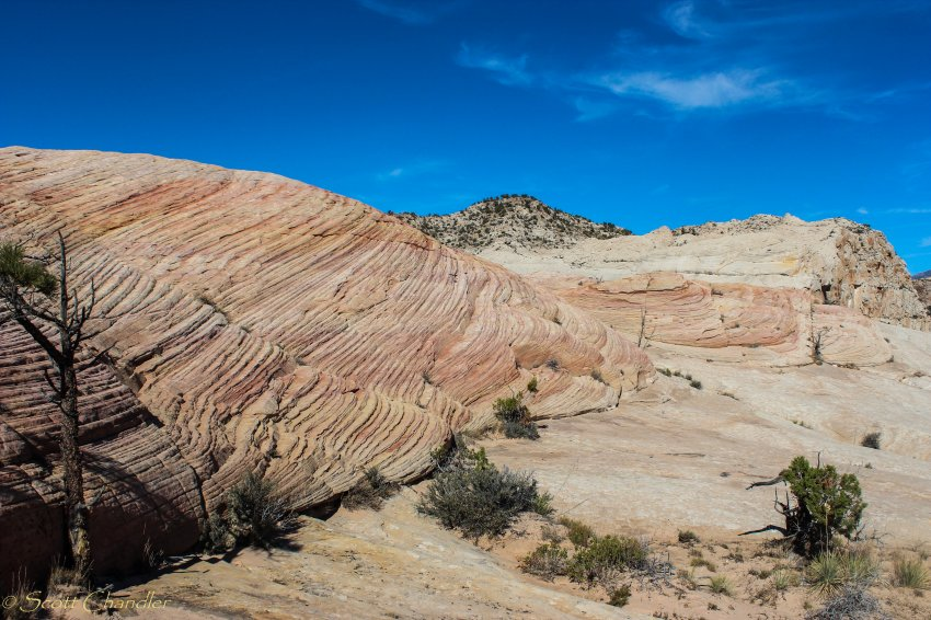 Snow Canyon Rim 039-38.jpg