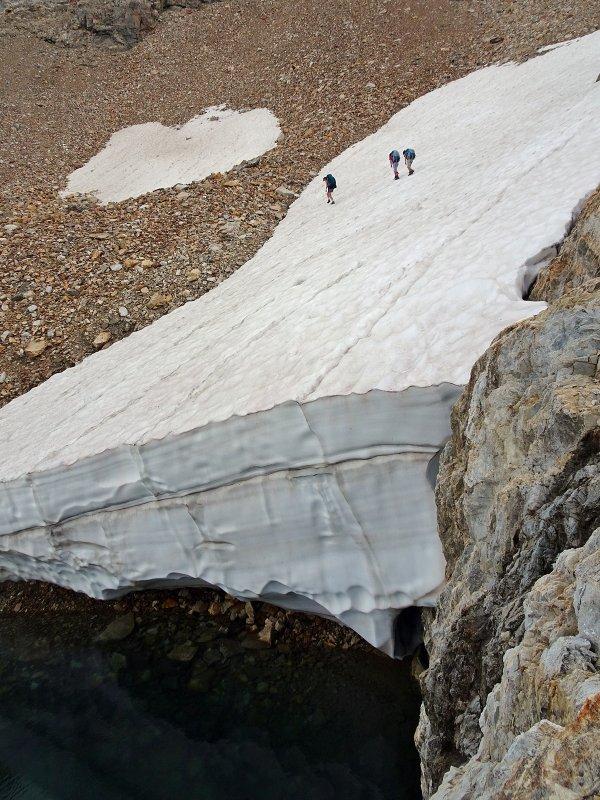 Snow Crossing 01.jpg