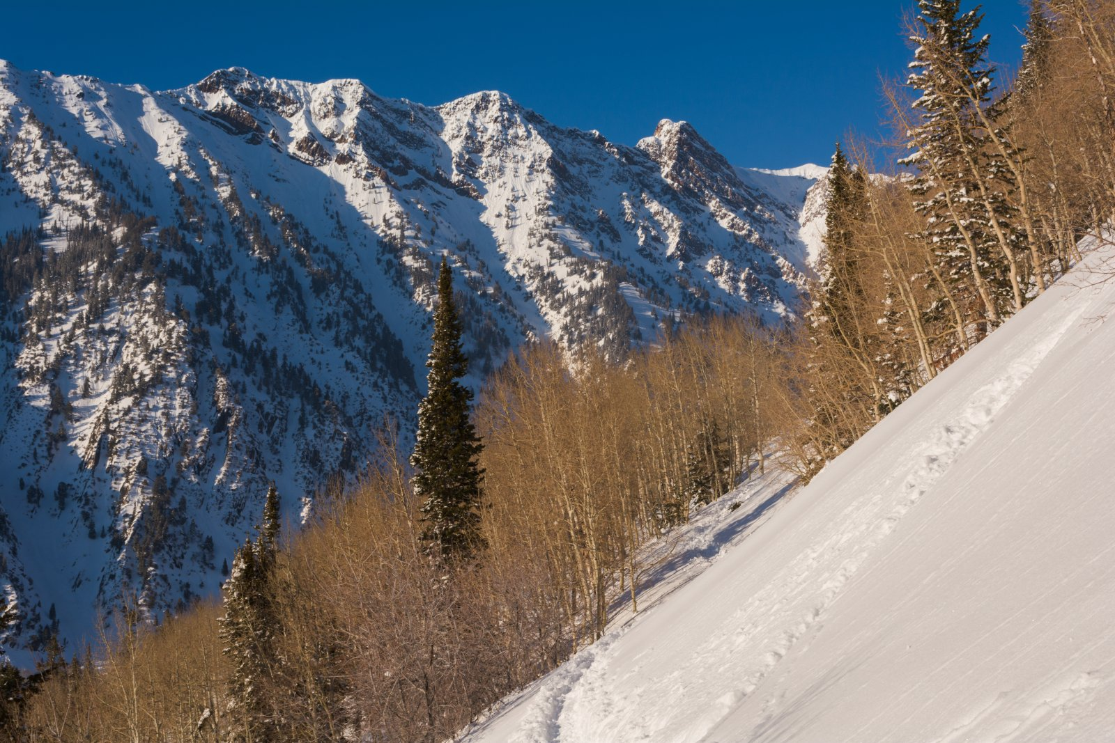 Snowshoeing With Ade0104-sm.jpg