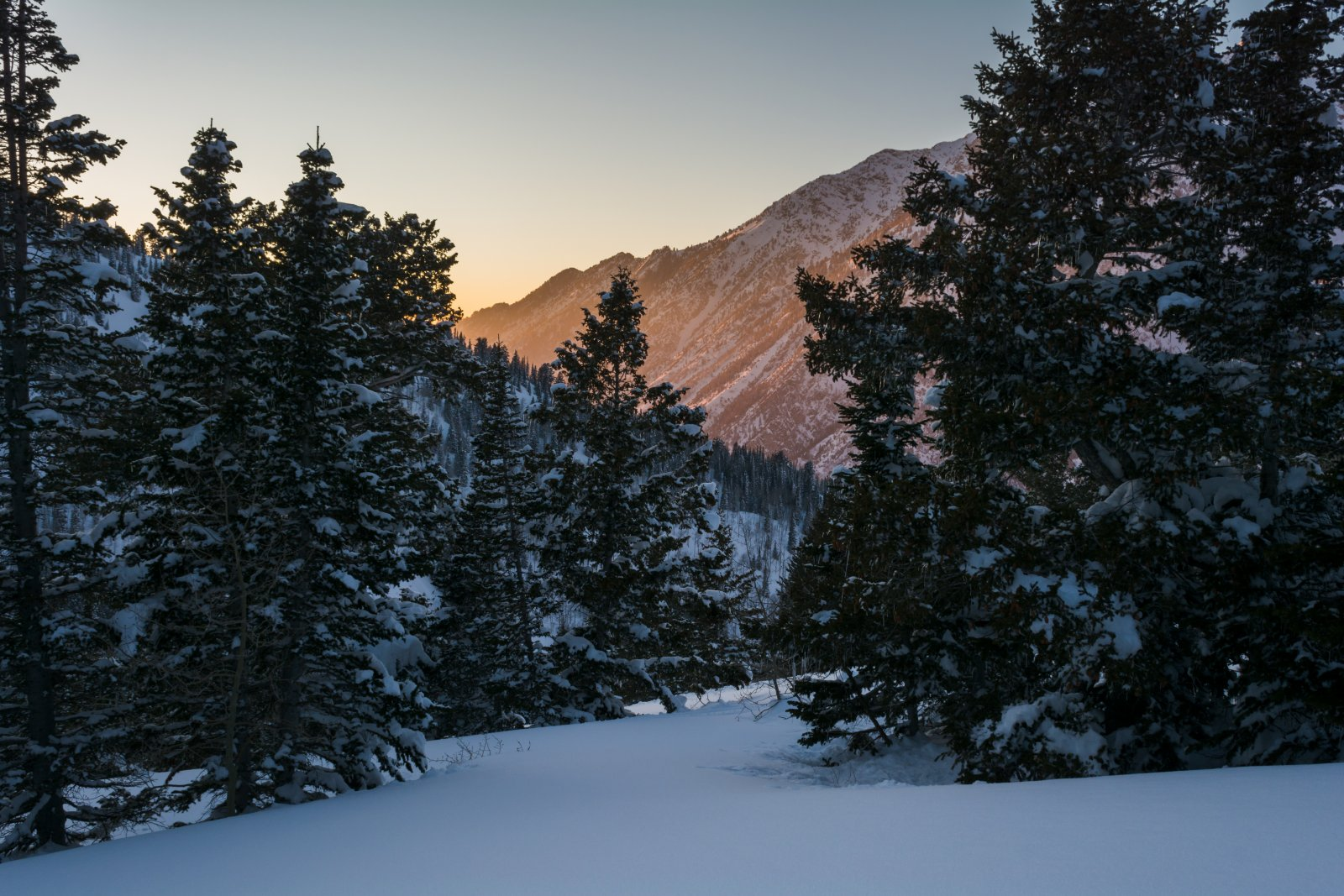 Snowshoeing With Ade0219sm.jpg