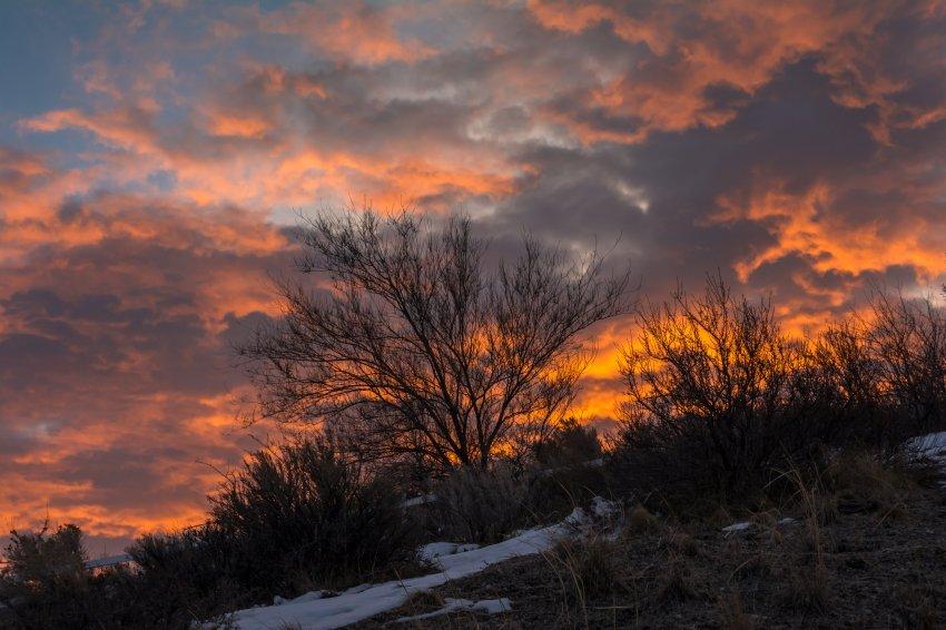 Sunrise 3-3-180013.jpg