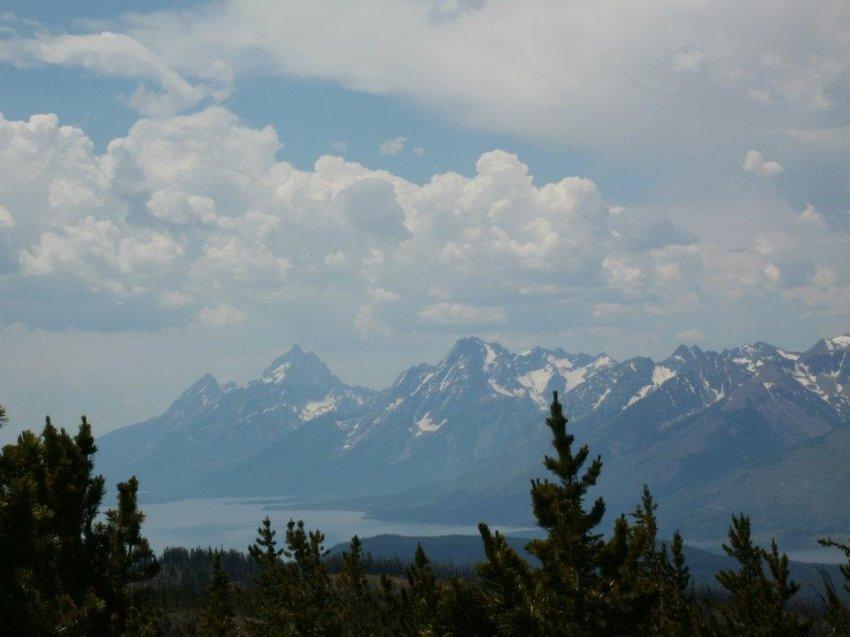 Tetons From Huckleberry Mt Lookout 2012.jpg